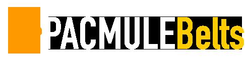 pmb-logo