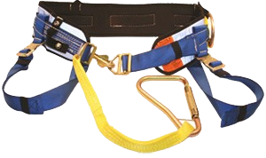 Blue and Yellow PacMule Belt